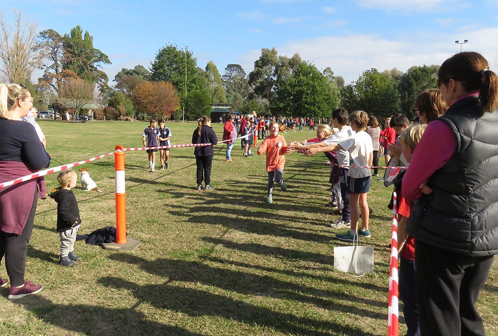 LOCAL PRIMARY SCHOOLS CROSS COUNTRY RUN