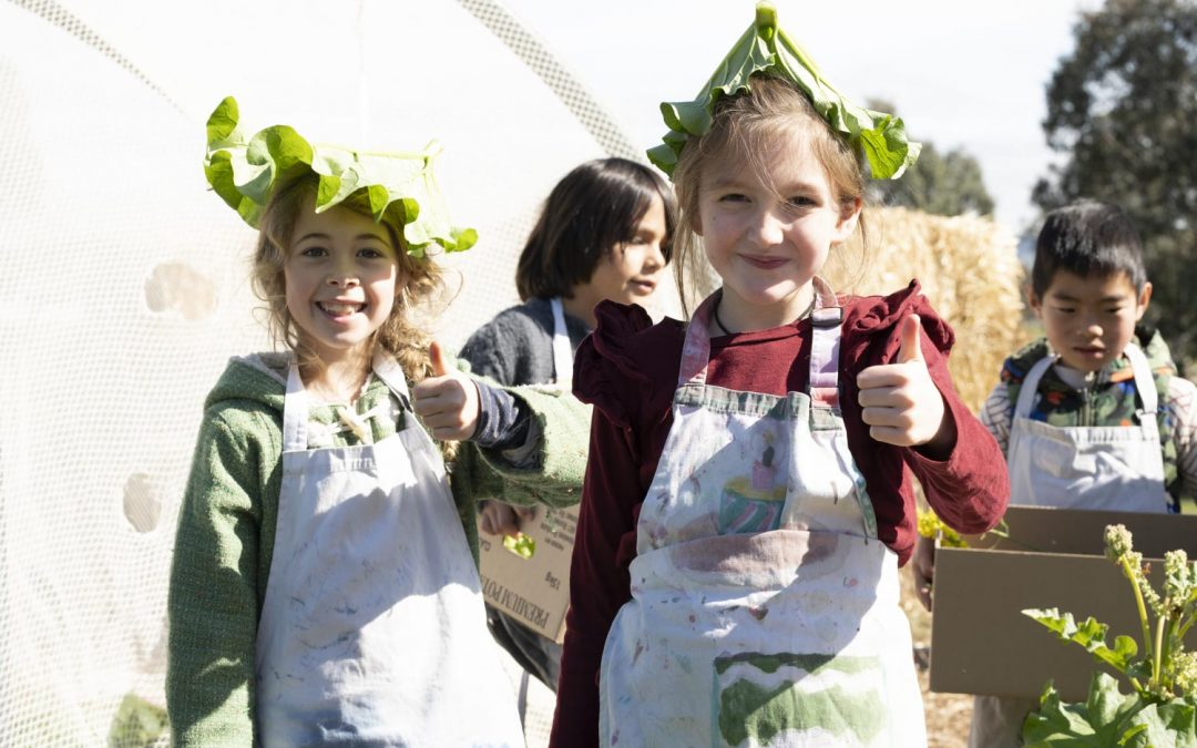 Class Two chefs in the garden